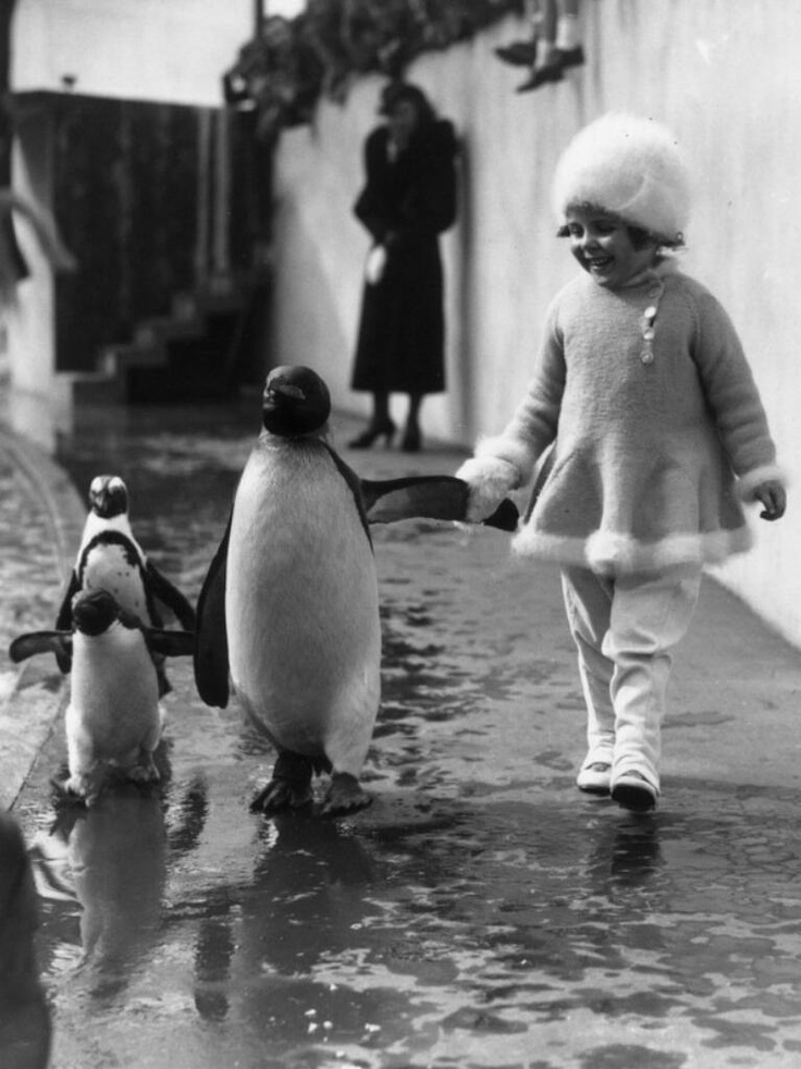 19-a-little-girl-holds-a-penguins-flipper-as-they-walk-together-around-the-london-zoo-1937