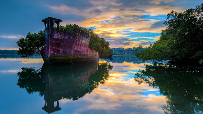 """Những """"con tàu ma"""" tuyệt đẹp bị thất lạc và lãng quên trên đại dương (Ảnh: buzzycrush)"""