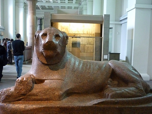 British Museum 2011: Prudhoe lion 6