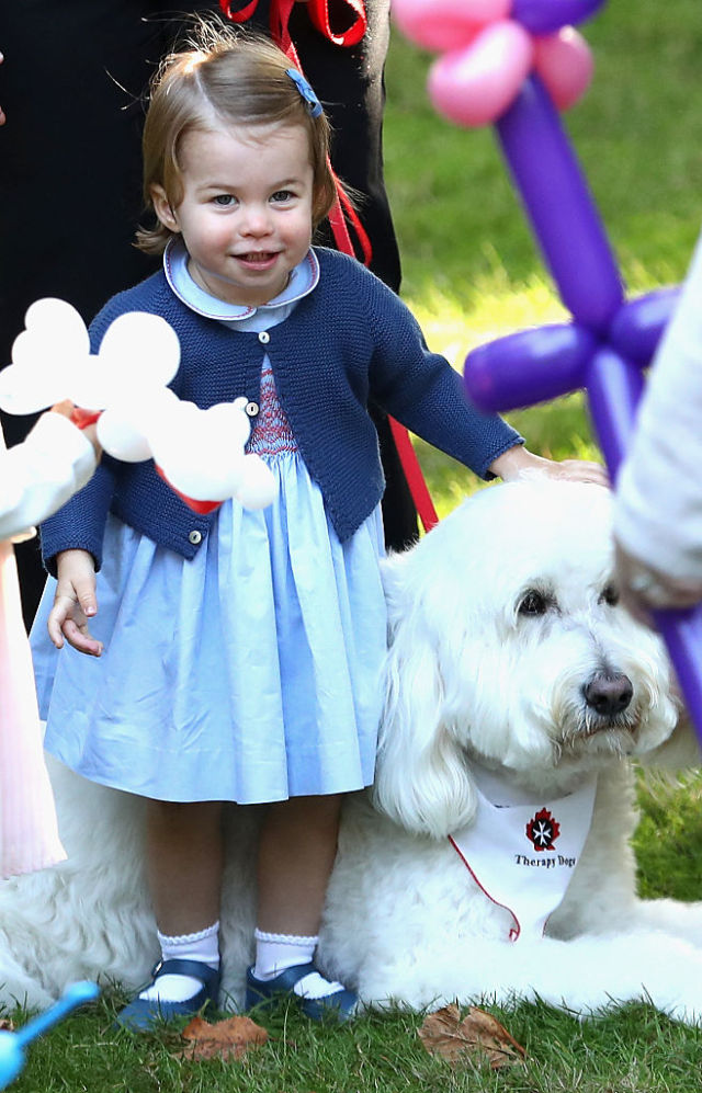 VICTORIA, BC - SEPTEMBER 29: Princess Charlotte of Cambridge plays with a dog at a children's party for Military families during the Royal Tour of Canada on September 29, 2016 in Carcross, Canada. Prince William, Duke of Cambridge, Catherine, Duchess of Cambridge, Prince George and Princess Charlotte are visiting Canada as part of an eight day visit to the country taking in areas such as Bella Bella, Whitehorse and Kelowna (Photo by Chris Jackson/Getty Images)
