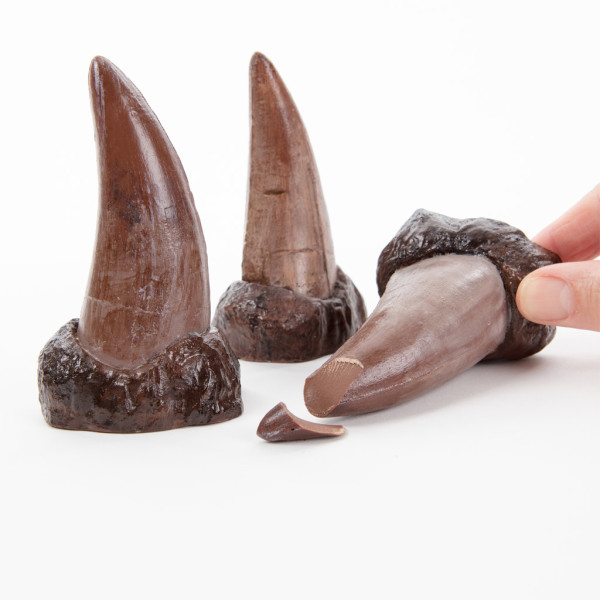 Chocolate-T-Rex-Tooth-600x600