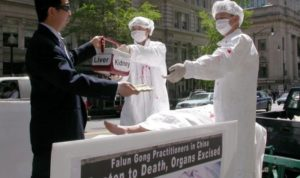 organ_harvesting-china-675x400