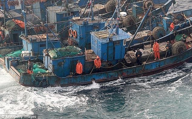 Tàu cá Trung Quốc thường xuyên xâm nhập vùng biển Hàn Quốc. (Ảnh: Daily Mail)