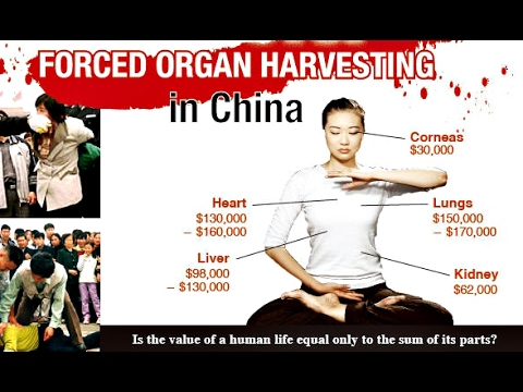 Forced Organ Harvesting