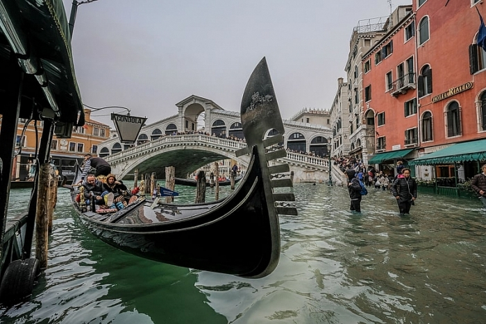 video thanh pho venice italia chim trong bien nuoc