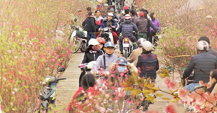 Bâng khuâng chiều cuối năm: Bao nhiêu năm theo dòng đời đua chen, thiếu quê hương ta biết trở về đâu?