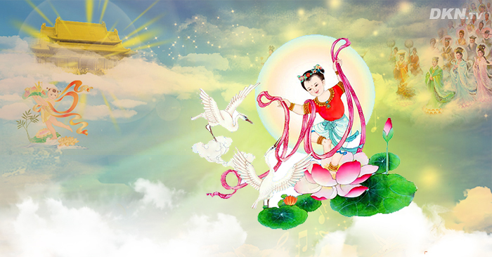 Đi tìm giọt nước mắt của Phật