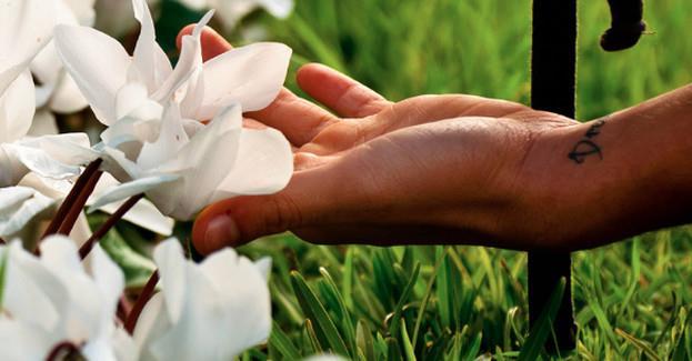 Liệu 5 giác quan có cho phép bạn cảm thụ trọn vẹn thế giới trước mắt?